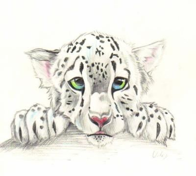 Les petit dessin de moi - Dessin de tigre facile ...